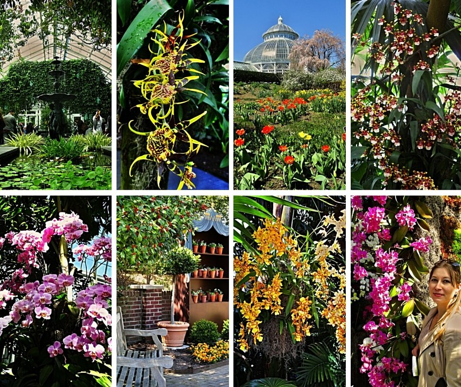 Bronx Botanical garden 1 (7)